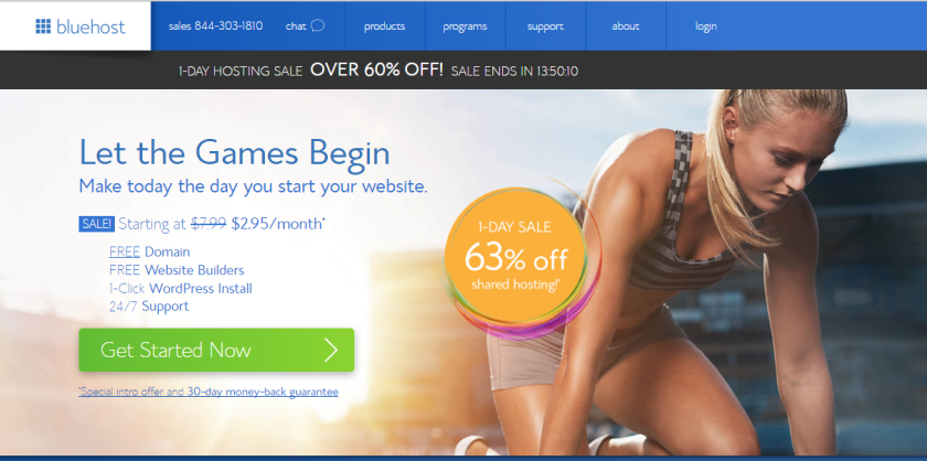 bluehost one day mega sale